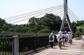 Hihibu511253_028