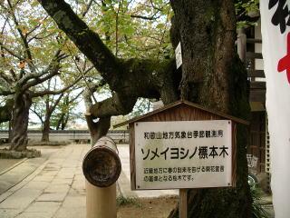 Saigoku1_0411