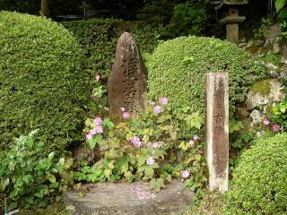 Saigoku2_0271
