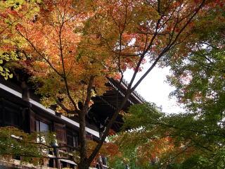 Saigoku3_0401